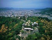 愛媛県松山市は日本の中では どれくらい都会なんでしょうか?