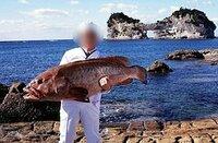 釣り師匠に質問です ❤ こんな大きな高級魚も釣れますか? ちなみにあたしが好きな魚~ 以下だぉ! (≧▽≦)/キャハハッァ♪♪ 1.海魚:さば・ブリ・イワシ・アジ(さしみ)、クエ・フグ・タラ・カワハギ(なべ) サンマ(塩焼き)、メバル・カサゴ・イサキ(煮付け) 2.川魚:あゆ・やまめ(塩焼き)、どじょう・フナ(汁)、うなぎ(蒲焼)