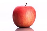 「りんご」と聞いて、思い浮かぶ歴史上の偉人といえば誰ですか?