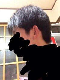横髪をのばしたいのですが… 自分の学校では横髪は耳にかからないようにするのともみあげが耳の穴を越さないという規定があります じぶんの髪型ではこの写真のように耳のまわりも切らないと不自然になると思います...