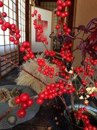 この実、赤い実はなんの木の実でしょうか。名前を教えて下さい。 真紅の実です。