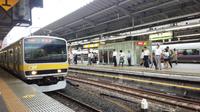 黄色い電車と東京駅 中央快速線にグリーン車が導入されますが、ホーム改良には緩行線は含まれないようです。オレンジ各停の廃止が予想されますが、中央総武線の車両による東京乗り入れは行われると思いますか?