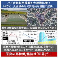 『バイオ燃料用藻類を大規模培養! 光合成で安定増殖に成功! IHIなど』2015/05/22 「含まれる油の割合が約50%以上と、他の生産手法よりもかなり高いという強み」  ⇒ 2020年の商用化に成功できるか? 世...