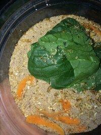 ミルワームが埋まってる砂?糞?は一体なんでしょうか? 謎です。 これはおがくずに変えた方がいいですか?  ミルワームに栄養を与えるには カルシウム、小松菜、ニンジン以外にあげるといいものはありますか?  ...