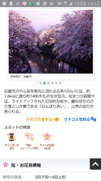 Q.愛知県岩倉市の五条川沿いの桜並木は車に乗りながらでも花見 観覧できますか?綺麗ですか? 彼女が冬に足を怪我してしまい、現在は治ってきて少しヒョコヒョコ歩きです。 あまり負担をかけさせたくないですが、...