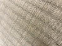 畳に黒い斑点がたくさんできていたのですがこれはカビでしょうか?