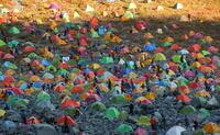 登山シーズン真っ盛りで混雑したキャンプ指定地でキャンプしている人たちは、夜中トイレに行きたくなったときはどうしているんでしょうか? ヘッドランプを付けて、こけつまろびつ山小屋脇のトイレまで行っている...