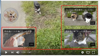 YouTubeで、まだ再生中なのに、動画の残り時間が数分くらいになると画面上に関連動画へのリンクが複数表示されて、再生している動画を隠してしまいます、 邪魔で仕方ないのですが(赤枠で囲んだ部分)これを非表...