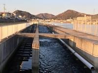 都市部のの河川の下流についてです。 この装置にはどういう意味があるのでしょうか?2つの役割は違いますか?大きい川を分離させ50mくらいの装置です。 詳しい方教えてください。