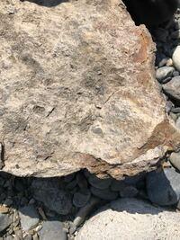 これって隕石ですか?重くて、断面が白くて、くぼみがあって柔らかいです。それと、金属探知機に反応しますどうでしょう