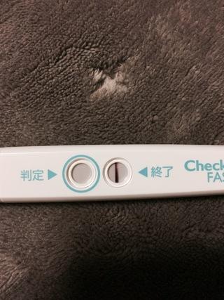 妊娠した時 高温期12日目