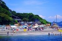 神奈川県横浜市海水浴場の海は綺麗ですか????