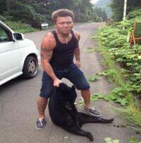 熊や犬が襲ってきた場合は殴り殺しても正当防衛になり罪に問われないんですか?