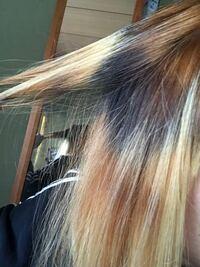 髪色が金髪で根本が8センチほど伸びており、プリン状態でした。 インナーカラーがしたくて、とりあえず伸びた部分をブリーチしました。 そしたら失敗して、根本が茶色、真ん中が黒その下は金になってしまいました。  暗めの茶色のビューティーラボの染め粉を買ってあります。 インナーカラー挑戦するか、全部をその色で染めるか迷っています。