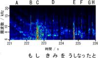 CDの高音域は、音楽としてはどのように聞こえるのですか。 CDには最高で約20 kHzまでの音が収録されているそうです。 ところが残念なことに、質問者の耳では8 kHzを超えると急激に聴力が低下していき、約13 kHz...