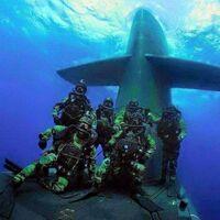 米軍 海軍SEALsと海兵隊に軋轢は? ビンラディン殺害作戦前後から 色々いる米軍特殊部隊のトップということにされている 海軍SEALS。  でも本来水陸両用作戦は海兵隊の管轄。 SEALsの軍事的、政治的躍進に対...