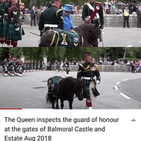 イギリス スコットランド この馬は何ですか?  衛兵の一員? 勲章のようなものを沢山つけていました。