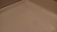 アパホテル糞 浴室に髪の毛とか最悪。 清掃したのかわからん。 あなたならクレーム入れますか?