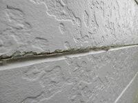 PGSホーム 外壁塗装 スーパーチタンプロテクト  平成27年にPGSホームという会社に外壁塗装を依頼しました。 スーパーチタンプロテクトとかで、太陽光と雨でいつでも外壁をきれいに保つというのが売りだとかで...