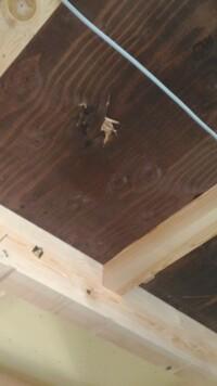新築中、天井の破損について  某大手工務店で新築中なんですが、2階の天井の合板部分に破損をみつけました。 構造上問題ないといわれ、クロスをかければわからなくなるとはいえ、どうも気になります。 天井断...