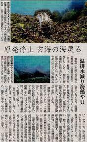 原発賛成派の売り文句として「環境に優しい」というのがありますが福島原発事故の後、原発が停止されてから相次いで原発のある各地方の新聞で すぐに生態系が戻ったとか、海を取り戻したという記事が掲載されまし...