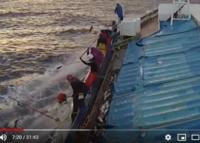 カツオを機械のように、ドンドン釣り上げる動画が有りますが、どうしてカツオは自動的に釣り針から外れるのですか?  こんな釣り方を発明したのは日本人ですか? __________ https://www.youtube.co...