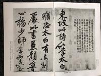 二玄社の中国法書選の中の46番、蘇軾集についてお聞きしたいです。 【黄州寒食詩巻】から始まり、8ページから11ページまでは誰が書いたものなのでしょうか?  欄外に【黄庭堅跋】となってい て、内容を見ると黄庭堅が書いたものなのでしょうか?  8ページ始まりの部分と11ページ終わりの部分の細かい行書の部分は蘇軾が書いたもの?  臨書作品にしたいと思うのでお伺いしたいです。宜しくお願...