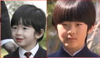 秋篠宮悠仁さまの顔立ちって、 ご成長されたとはいえ、 いくらなんでも変わりすぎだと思いませんか?  たれ目が吊り目に・・・。