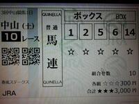 中山10R(15:10発走予定)、添付馬券どう思いますか?^^