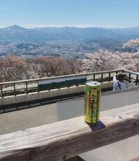 この景色がどこかわかる方いますか? 昨日今日の写真です。  #桜 #田舎 #北関東 #山脈 #景色 #山々 #観光 #高台