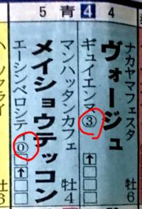 競馬新聞の見方について。 画像の赤い○で囲った母馬の下の数字は何を意味するものでしょうか? 数字の無い母馬もいます。
