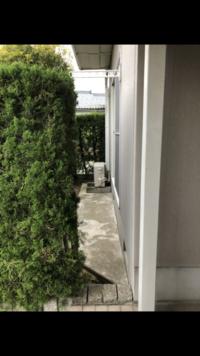 アパートの隙間を隠したいのですが、何かいい方法はありますか?この隙間ですと、部屋まで入ってこれてしまいます。ひとり暮らしなので、不安です。 植物を置く以外何かありますかね…?