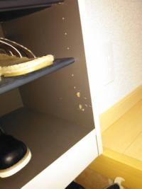 靴箱の扉に軽くもたれたらネジが全部取れてネジ穴がバカになってネジが締まらなくなりました。 どうすればいいのでしょうか? ボンド等でネジを固定できませんか?
