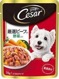 緊急です! ツルハドラッグかセイムスに画像みたいな犬のウエットタイプのご飯は売ってますか? メーカーは違ってもいいです。