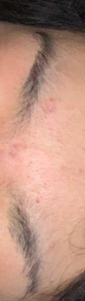 夏休みに入ったので眉毛を剃りました夏休みは1ヶ月ぐらいありますあと1ヶ月で伸びてくると思いますか?伸びて来ない場合どうしたら剃ったことバレませんか?風紀は始業式にあります!高校1年です