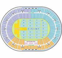 大阪城ホール公演のパターンBのステージ構成の場合、アリーナA2の15列目9とスタンドG1列目39ではどちらの方が良い席でしょうか?
