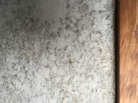 壁の材質について 祖母の和室の壁には、セメントに綿のようなものを吹き付けてあるようなものが使われています。 ①このような壁は、なんと呼ばれているのでしょうか。 ②この壁で造られた部屋 で生活していても...