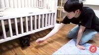 セブチの保護猫の動画ってどこでみれますか? 2018年8月30日あたりのものです。 vliveのdispatchとセブチの欄では見つからなくて... 写真の通り、vliveなのは確実だと思うのですがわかる方が いらっしゃいましたら教えて頂きたいです> < よろしくお願いします。  seventeen / ウォヌ