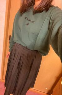 ファッションセンスとかなくてネットで見たファッションそのまま買ったんですけど、変ですか? 自分ではわからなくて(--;) 修学旅行です