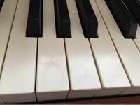 電子ピアノの鍵盤ですが表面のコーティング?が剥がれて傷になっていますが、どうしたら良いでしょうか? グランドピアノやアップライトピアノでも使い込むとこのようになるのでしょうか? 弾き方(爪など)が悪いのでしょうか? 電子ピアノはカワイのCA65木製鍵盤です。 修正、保護の方法があれば教えて下さい。