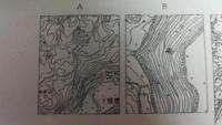 地形図の読みとり方を教えて欲しいです。 ・AとBは2万5千分の1である ・点aの標高が215メートルである ・B中の千歳川は北流である 以上です。どうか回答お願いします。