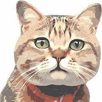 【岩合光昭】【猫の写真集】【100枚】 、 岩合先生が出している猫の写真集で、 1番オススメのいい写真集は、どの何と言う 写真集でいくらぐらいしますか? また、DVDでも構いません。 僕は以前、「ねこ」と言う題...