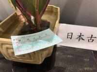 新幹線の特定運賃って、適用される区間を教えてください! あと、新幹線の入札はなぜ赤文字なんですか?