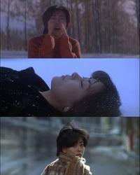 「LOVE LETTER」1995年で 神戸の渡部博子、小樽の藤井樹。 中山美穂が一人二役で奮闘でしたが、 場面ごとの中山美穂が どちらの役か混同して 紛らわしいと思いましたか?