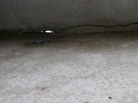 地震後に直した階段踊場の隙間を埋めたモルタルが割れました。  鉄筋コンクリート造の外階段で、地震で階段踊場と壁の間に隙間ができてモルタルで埋めました。 2年後にまたも隙間が出来てしまったのですが、原因がわかりません。 踊り場がさらに沈下したのか、補修したモルタルが割れたのかわかりませんが、モルタルは2年で割れる事はあるのでしょうか?  写真は2年前の補修前です。