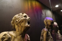 幽霊の肯定派にお聞きします。  今、上野のミイラ博物館で世界のミイラの展示を しています。ミイラって死体の展示ですよね。それを 世界中で観覧しています。 しかしながらミイラの展示場 で幽霊が出たなん...