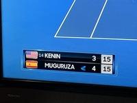 全豪オープンテニスで、国旗と選手名の間に表示されている数字って、世界ランキングですよね。 片方の選手にしか表示されてませんが、何か意味はあるのでしょうか。
