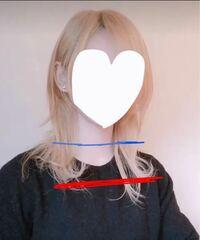 ウルフカットの髪型についてのご質問失礼します。 ※添付画像の青線が私の今の長さ。赤線は目指している長さです。  私の今の長さの状態でウルフカットにし、その後も定期的に美容院に行き手入れをして、伸ばしな...