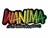 邦ロックバンドのWANIMAの中で比較的速い曲を教えてください。