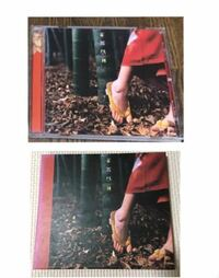 スピッツ「花鳥風月」のプラスチックCDケースバージョンと紙ジャケット(?)との違いは何ですか?